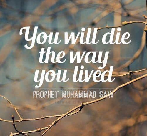60 Islamic Quotes On Life With Images Delectable Islamic Quotes About Life
