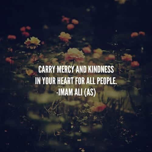 Best Humanity Quotes in Islam (25)