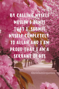 Proud to be Muslim Quotes (34)