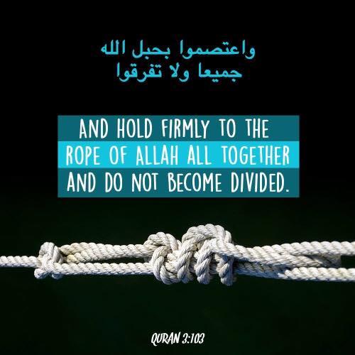 United Muslim Brothers