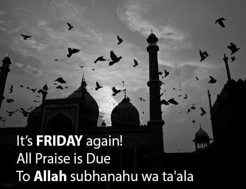 praise for Allah