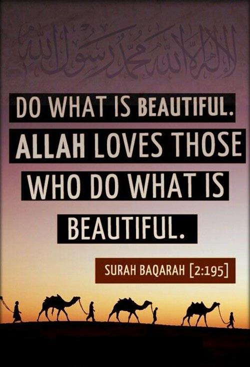 Beautiful Work by Allah