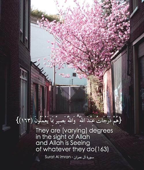 Allah is the powerful