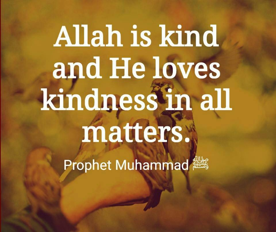 Best Humanity Quotes in Islam (38)