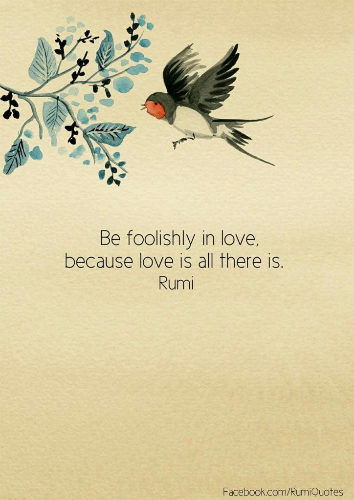 Be Foolish In love