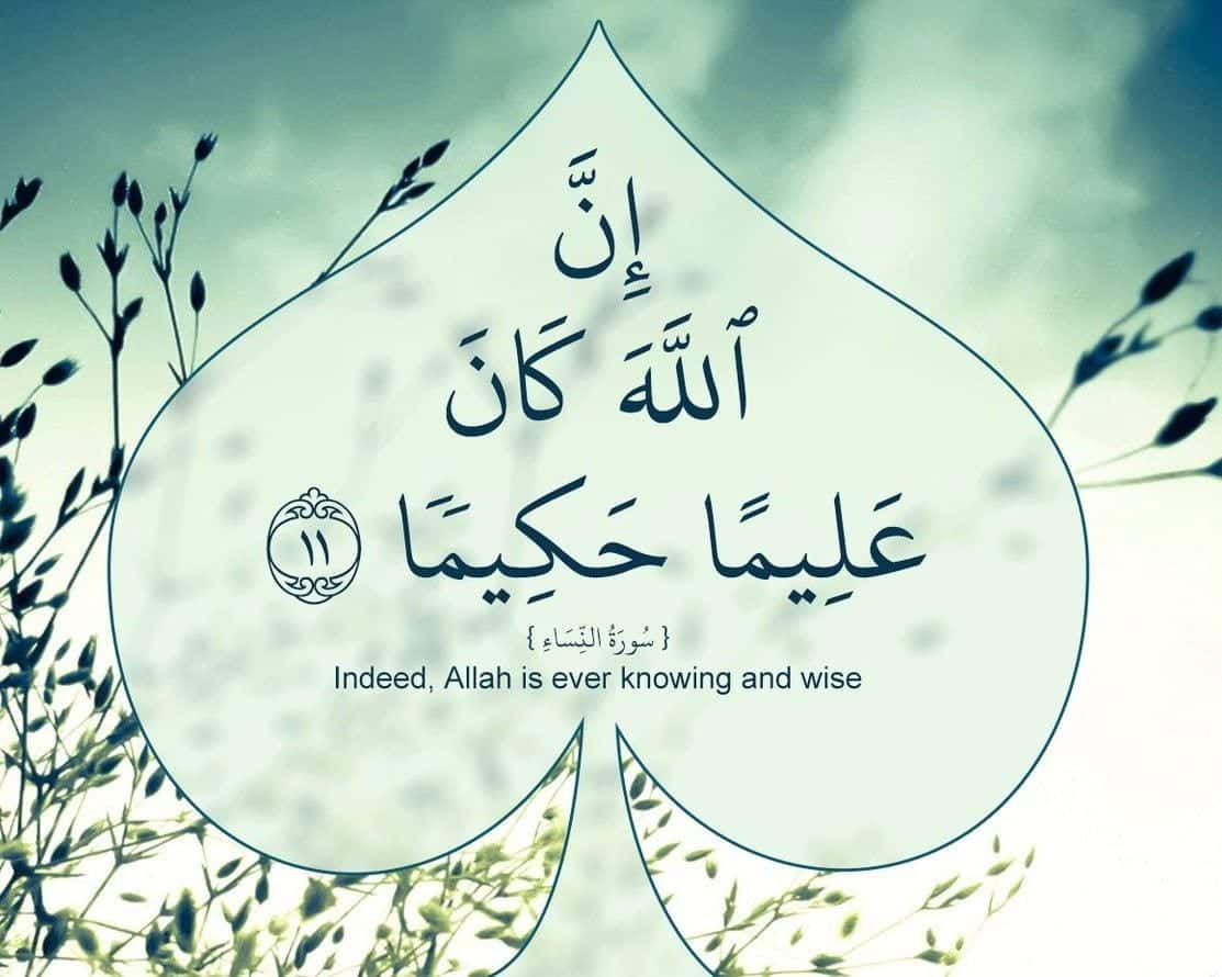 Best Allah Quotes and Sayings (13)