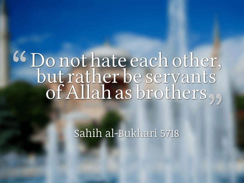 Best Humanity Quotes in Islam (17)