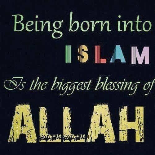 Proud to be Muslim Quotes (28)
