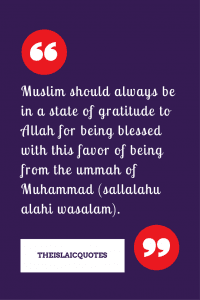 Proud to be Muslim Quotes (24)