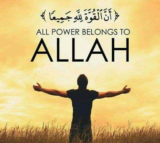 Best Allah Quotes and Sayings (14)