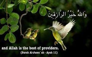 Best Provider
