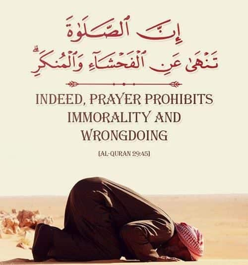 No Wrongdoings