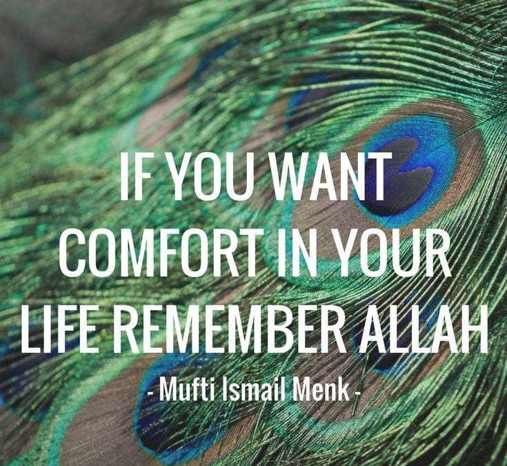 Mufti Menk Quotes (46)