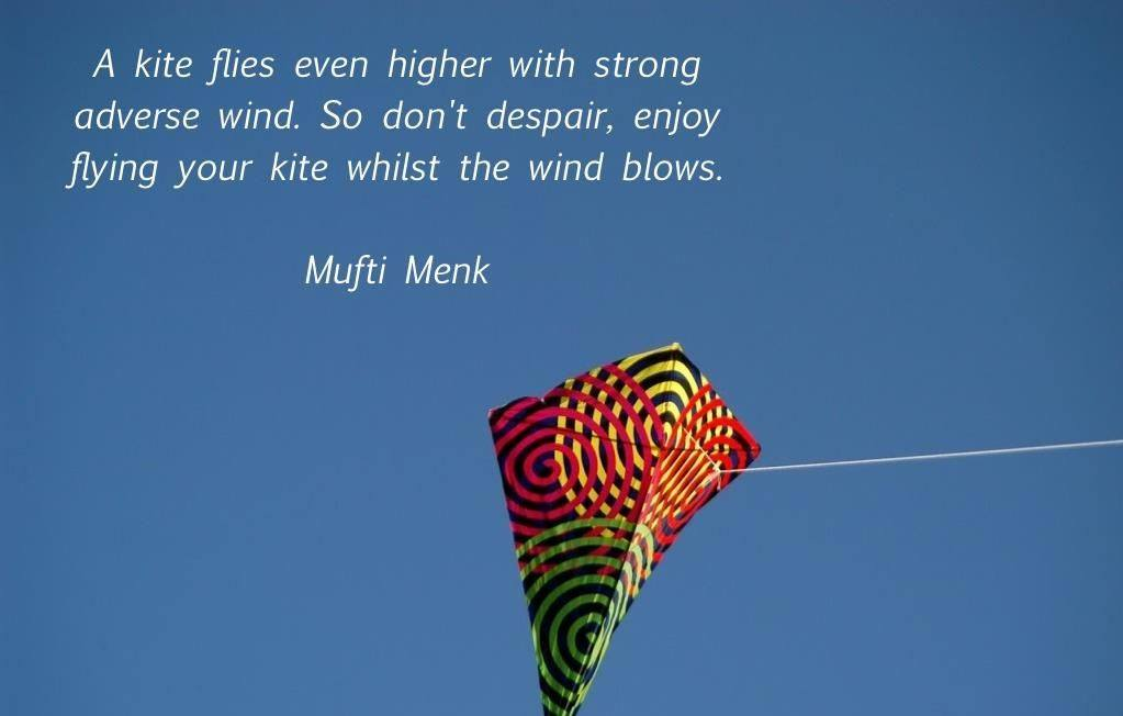 Mufti Menk Quotes (26)