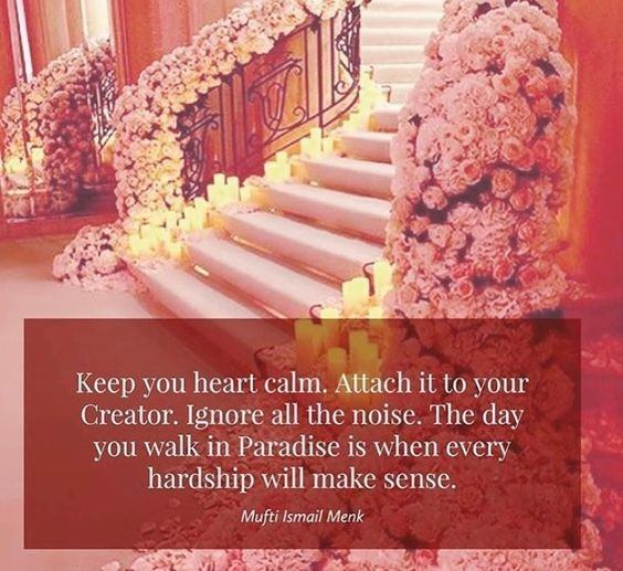 Mufti Menk Quotes (12)