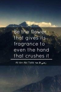 Best Quotes from Imam Hazrat Ali (27)