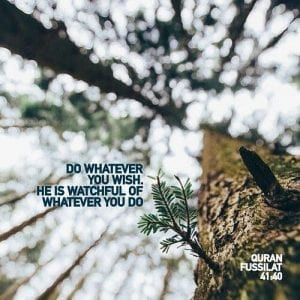 Allah Is Watchful