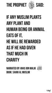 Inspirational Islamic Quotes About Charity (18)