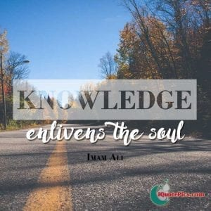 Islamic Educational Quotes (21)
