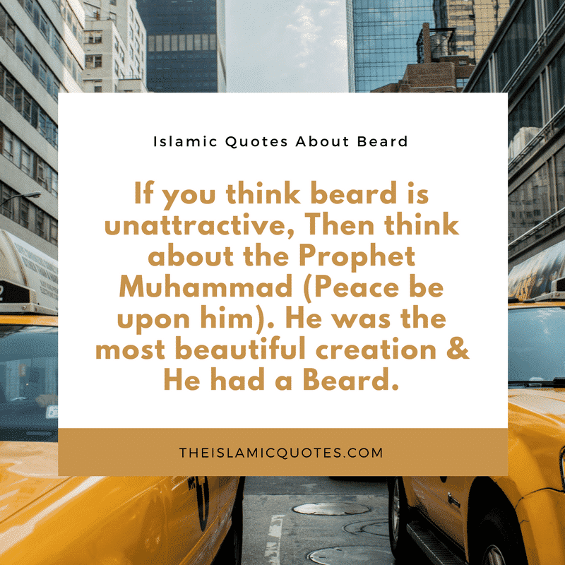 Best Beard Quotes (23)