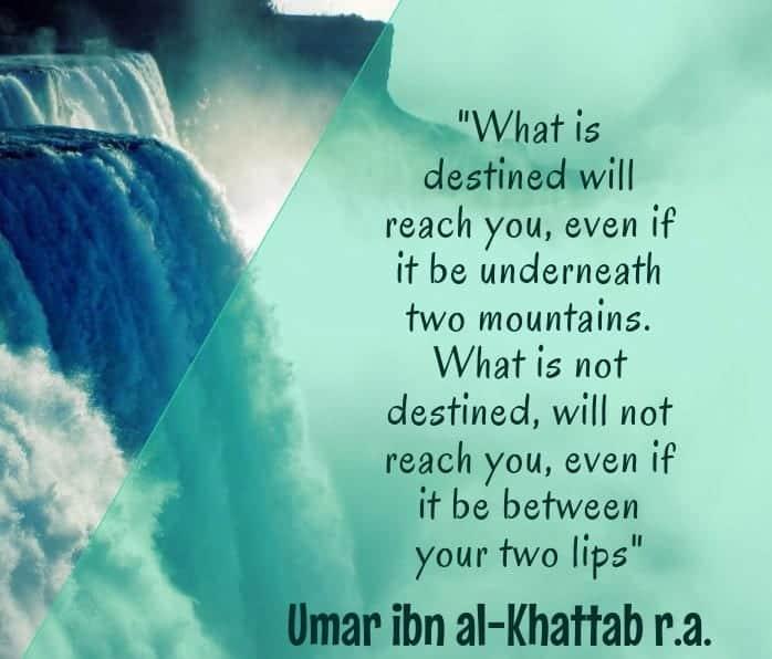 Umar Bin Khattab Quotes (27)