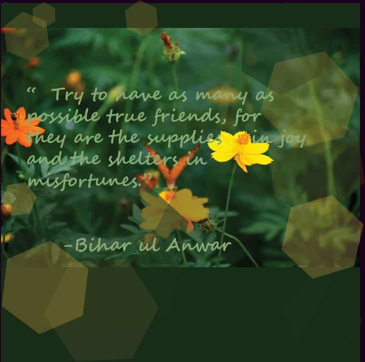 islamic quotes on friendship