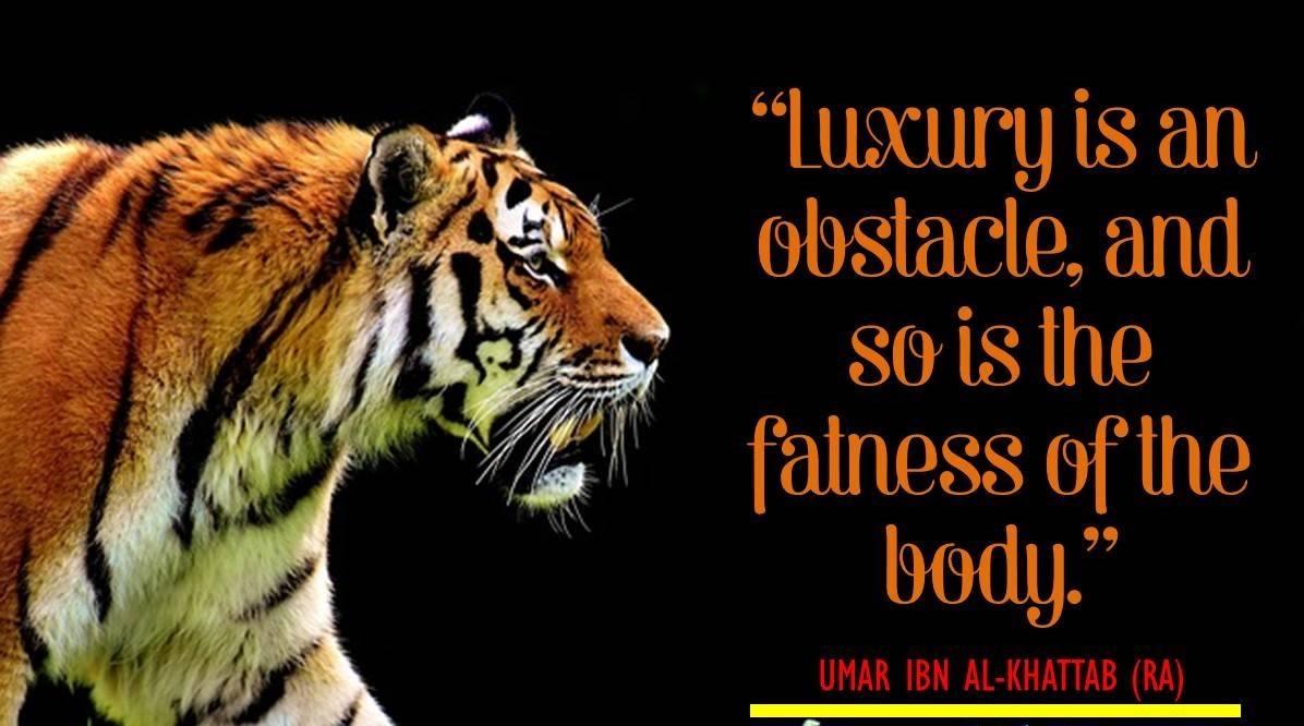 Umar Bin Khattab Quotes (11)