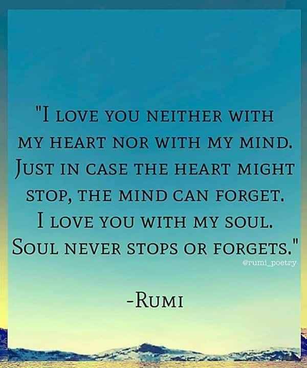 Rumi Love Quotes Mesmerizing 48 Beautiful Rumi Quotes About Love Life Friendship