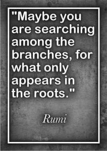 Rumi Beautiful Quotes About Love. Life & Friendship (10)