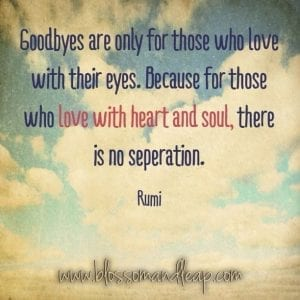 Rumi Beautiful Quotes About Love. Life & Friendship (4)