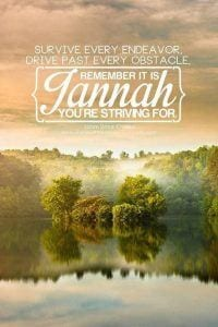 Quotes About Jannah In Islam (18)
