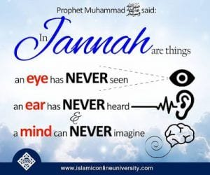 Quotes About Jannah In Islam (9)
