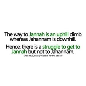Quotes About Jannah In Islam (7)