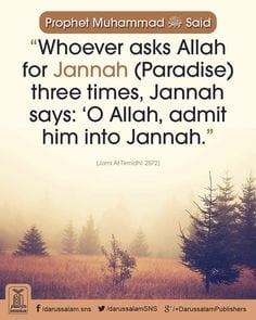 Quotes About Jannah In Islam (5)