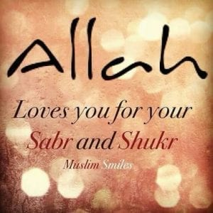 Islamic Quotes on thanking Allah (16)