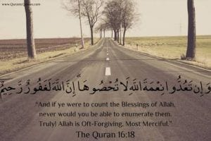 Islamic Quotes on thanking Allah (22)