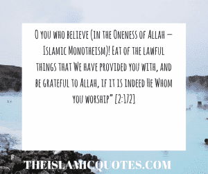 Islamic Quotes on thanking Allah (9)
