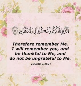 Islamic Quotes on thanking Allah (23)