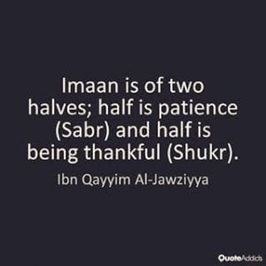Islamic Quotes on thanking Allah (13)