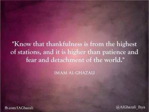 Islamic Quotes on thanking Allah (15)