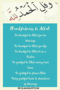 Islamic Quotes on thanking Allah (31)