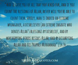 Islamic Quotes on thanking Allah (8)
