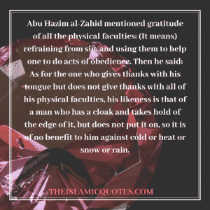 Islamic Quotes on thanking Allah (6)