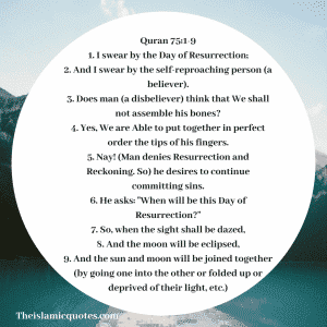 Judgement day quotes In Islam (36)