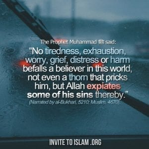 Inspirational Islamic Quotes For Crucial Times (15)