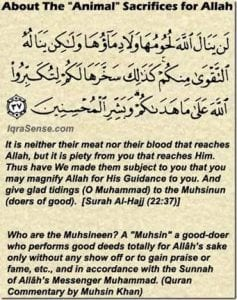 Eid ul Adha (11)