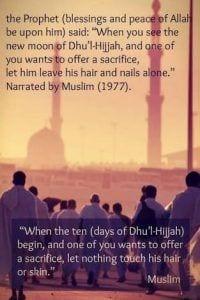 Eid ul Adha (16)