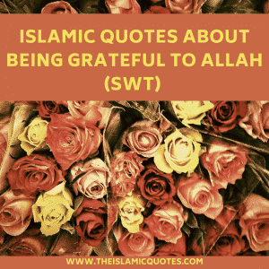 Islamic Quotes About Gratefulness (2)