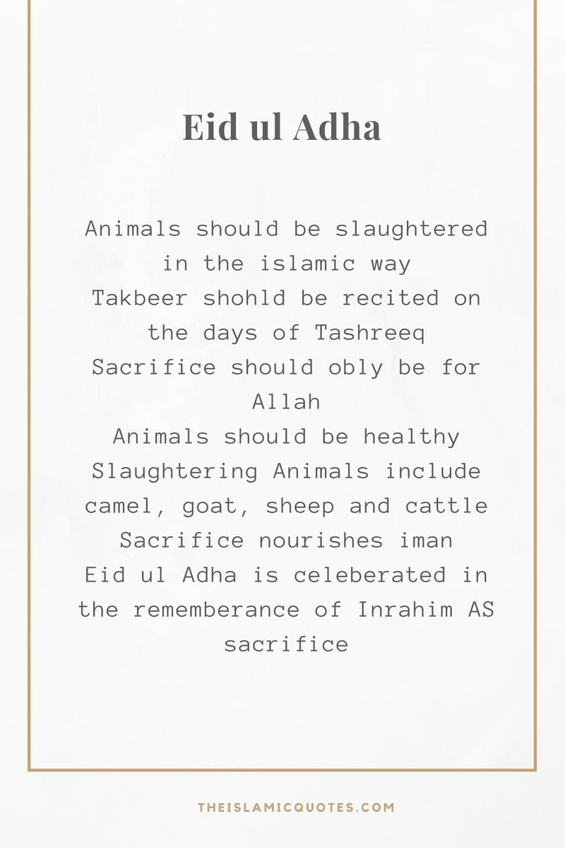 Eid ul Adha (2)