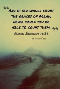 Islamic Quotes About Gratefulness (22)